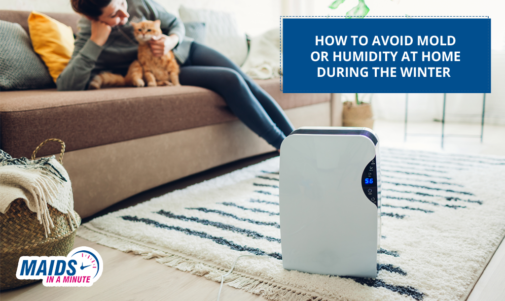 Maids in A Minute - How to Avoid Mold or Humidity at Home During the Winter